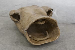 7-Misellathum Pharallelus, 2013, plaster and jaw's shark